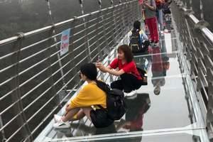 长兴龙山绿道玻璃悬索桥