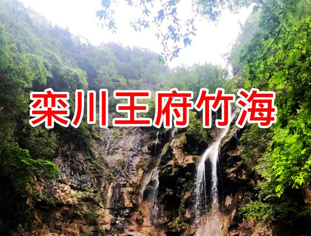 王府竹海宣传图