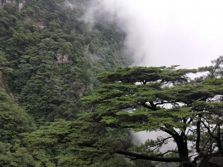 江西省内四大避暑景点,实至名归的避暑圣地!_南昌旅游攻略