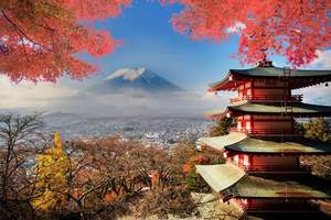 长沙到日本的旅游团,长沙直飞日本东京、大阪6日游(豪华品质)