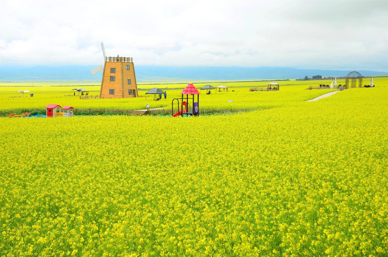 郑州到青海湖旅游团三角洲游戏5秘籍图片