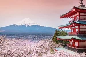 长春到日本旅游 长春到日本东京、大阪、富士山、白川乡7日游