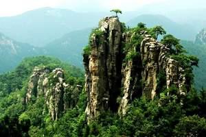 沂蒙山旅游区门票 云蒙山门票 蒙山国家森林公园门票