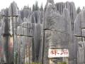 [云南]北京昆明大理丽江版纳四飞八日游_云南旅游_版纳野象谷