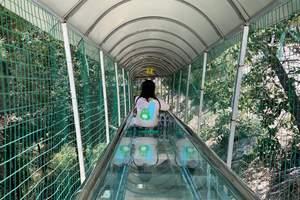 湖州耀武關戶外玻璃橋門票