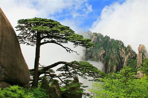 黄山风景区 视觉中国 资料图
