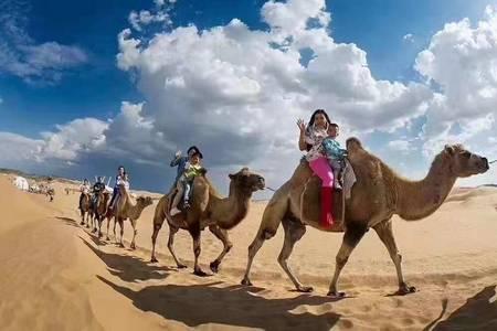 内蒙古沙漠一日游   内蒙古库布其沙漠一日游  市内免费接送