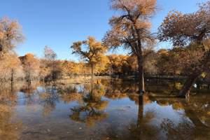 【金秋南疆】天山天池-吐鲁番-罗布人村寨-胡杨林8日游