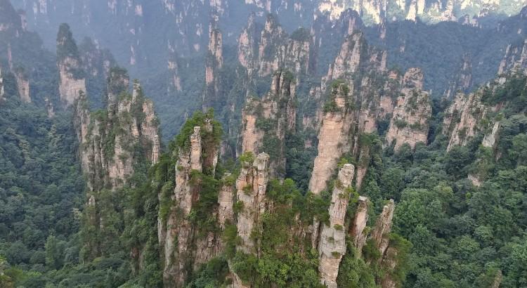 第一天游玩的景区:张家界森林公园,袁家界,杨家界景区