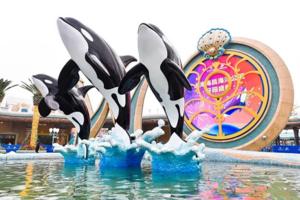 上海海昌海洋公园开业,本土品牌是否有了跨越迪士尼的底气?