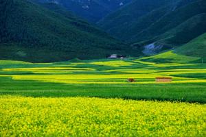 """""""一部手机游甘肃""""4月底正式上线 甘肃旅游步入智慧时代"""