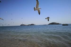 辽宁海岛旅游 沈阳发团哈仙岛两日游 辽宁周边海边哪好