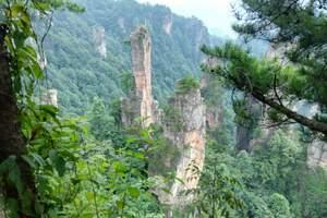 升级版*长沙韶山、天门山、张家界森林公园、凤凰古城6日游