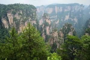 升级版*长沙韶山、天门山、森林公园和大峡谷 凤凰古城6日游