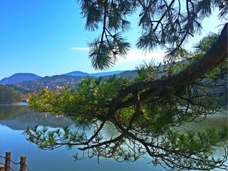 描写庐山的风景