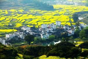 景区发展需改革 开放式旅游区将取代旅游景区