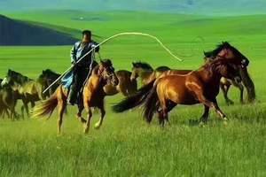 淄博山水旅游到呼伦贝尔草原、满洲里、室韦、大兴安岭双飞五日