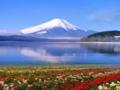 [日本]日本无自费7日游_日本旅游价格-富士山+大阪旅游攻略