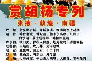 北京到新疆胡杨林旅游团、喀什、库尔勒 、张掖专列14日游