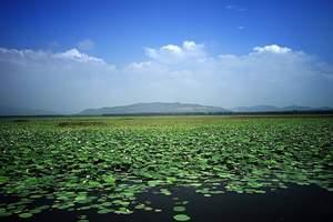 淄博到台儿庄两日游-淄博到枣庄微山湖红荷湿地、台儿庄二日游