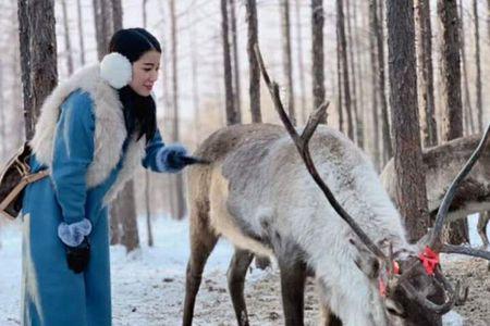 【3天2晚】呼倫貝爾冬季旅游包車冷極村海拉爾純玩3日游自由行