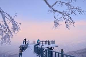 哈尔滨出发|亚布力滑雪甄选团_纯玩品质跟团一日游