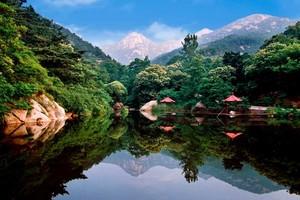 淄博沂源鲁山国家森林公园、九天洞一日游(10人以上独立成团)