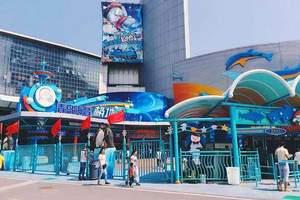 淄博暑假学生青岛极地海洋世界世界一日游-青岛极地世界一日游