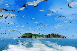 淄博去威海海驴岛旅游  淄博去海驴岛 神雕山动物园两日游大美