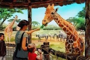 郑州银基动物王国门票特价 银基动物园门票刷身份证进