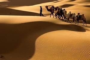 精品小包团 康巴什  鄂尔多斯草原   5A响沙湾二日游