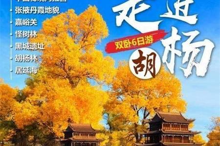 北京到额济纳胡杨林、 怪树林 居延海 宁夏沙湖专列6日游高标