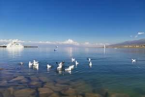 青海湖、茶卡盐湖纯玩二日游
