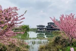 赏花季《凤凰湖湿地公园》一日游