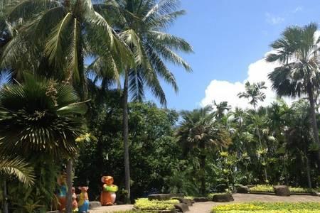 【天津去泰国旅游团价格】曼谷珊瑚岛+金沙岛7天 泰国旅游攻略