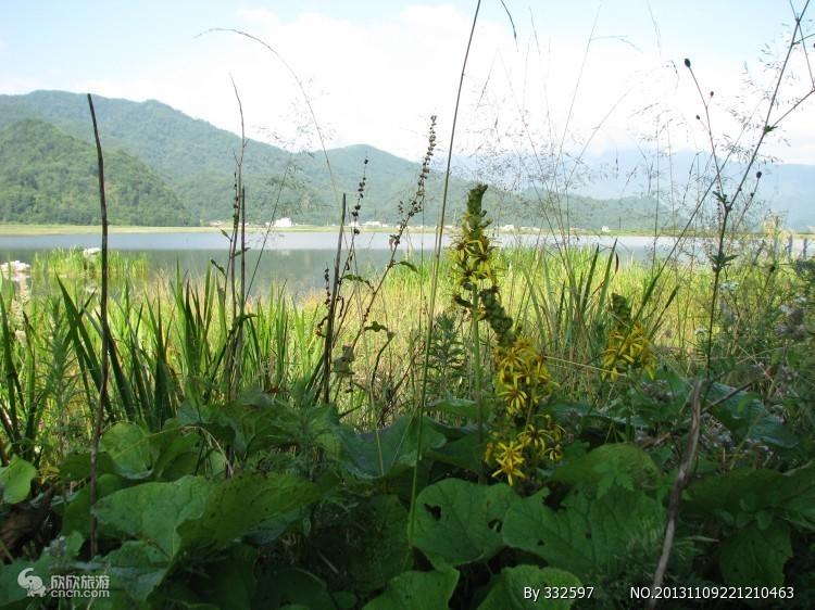 大九湖高山湿地图片
