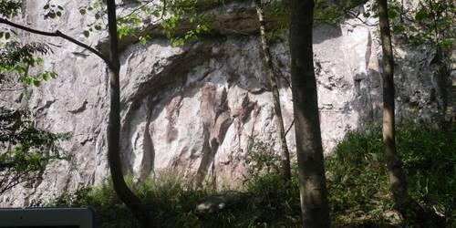 雁荡山森林公园