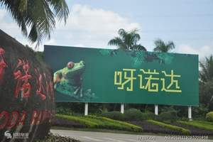 海南呀诺达雨林文化旅游区