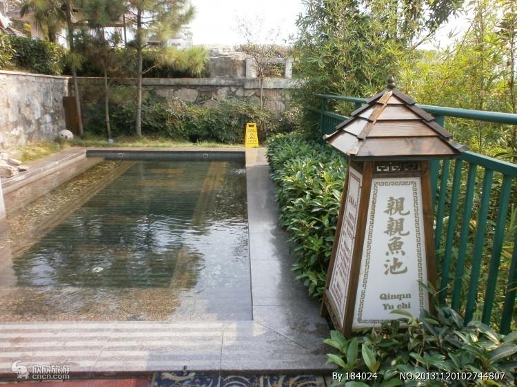 汤泉池图片