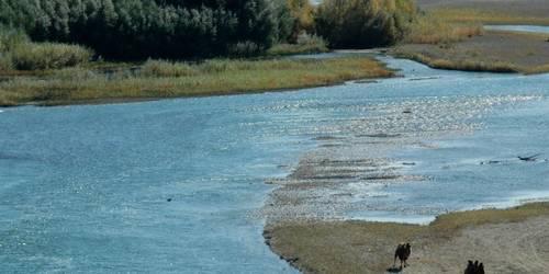 額爾齊斯河
