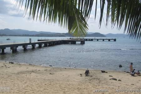 曼舞鲸鲨宿雾+薄荷7日游4星+5星含出海 武汉到菲律宾旅游H