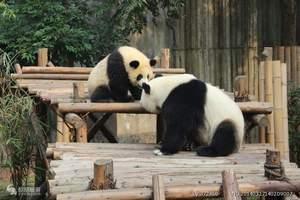 成都+都江堰+熊猫乐园+九寨沟+黄龙6日游