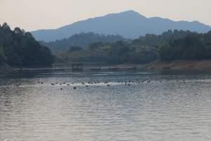 婺源鸳鸯湖