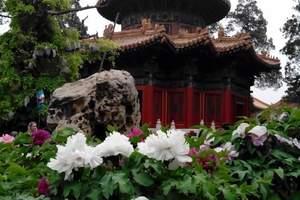 恭王府后花园