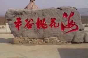 【北京京郊游】平谷桃花节赏花、石林峡、采摘一日(团队报价)