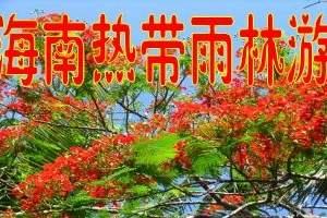 海南五指山探险・大峡谷漂流・太平山瀑布2日游