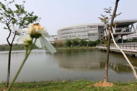 深圳周边举办会议拓展训练去哪里比较好|东莞松山湖住五星两日游