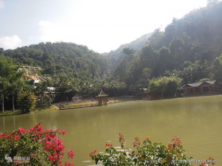 野象谷景热带雨林区图片