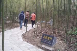 栾川鸭石红豆杉景区