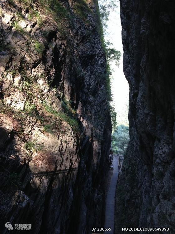 张家界大峡谷图片